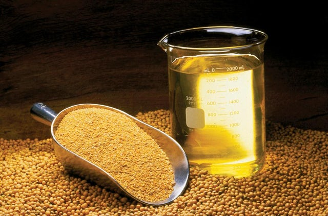 More than meal: Soybean as feed ingredient