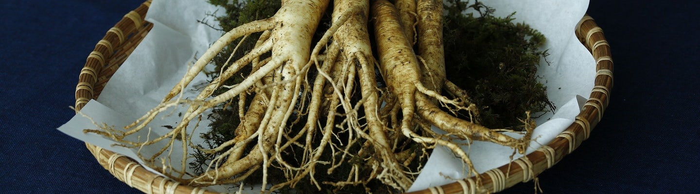 Let's make ginseng extract